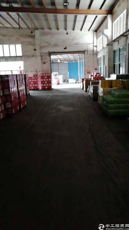 平湖新木村委附近新出一楼单一层钢构1000平方
