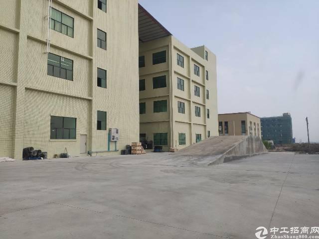 工业区全新标准厂房五层9000平方可分租有补贴
