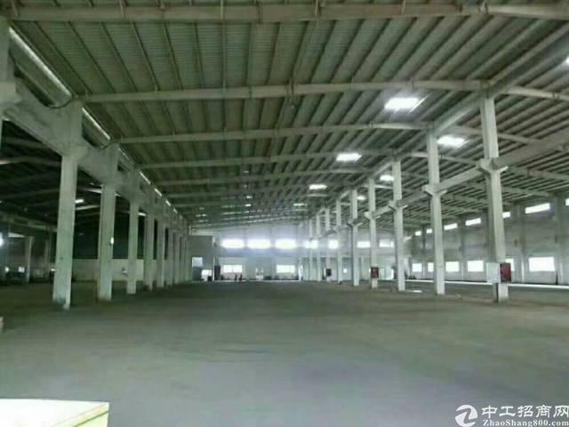 光明15米高钢构5000平方出租