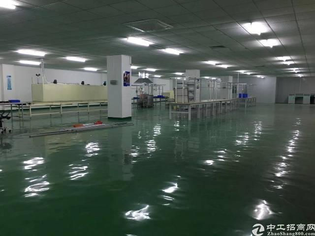 平湖现成装修厂房出租,2500平方带无尘车间-图2