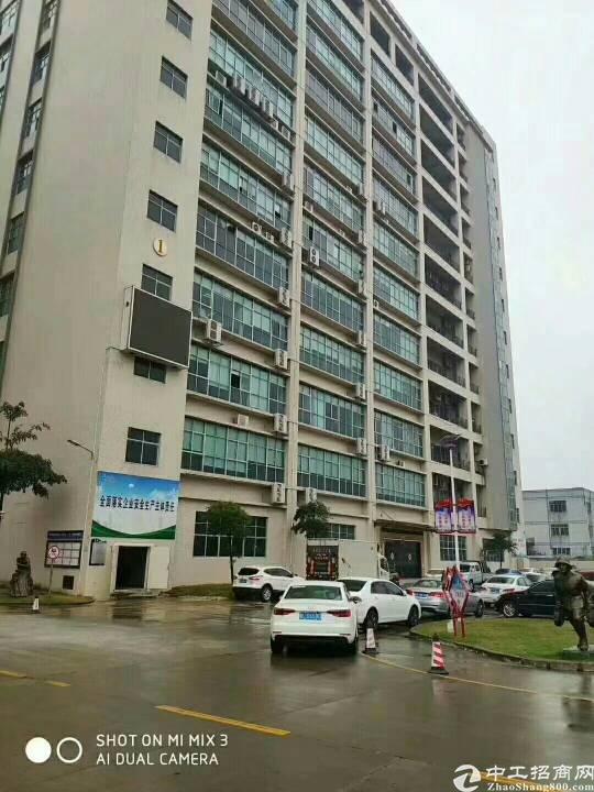沙井新出楼上一整层2500平方标准厂房,免租期两个月!