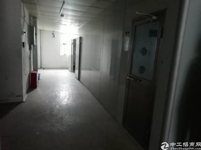 福永凤凰新出原房东厂房1100平无尘车间转让