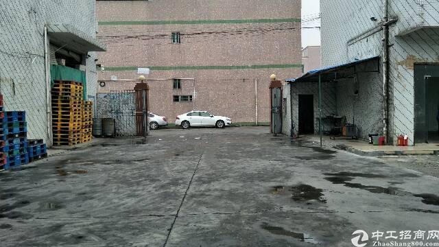 平湖新木村一楼钢构仓库出租1000平米