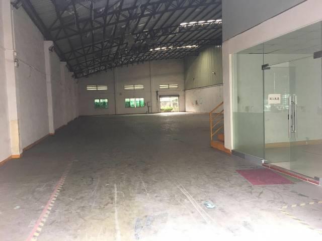 带地坪漆单一层厂房出租