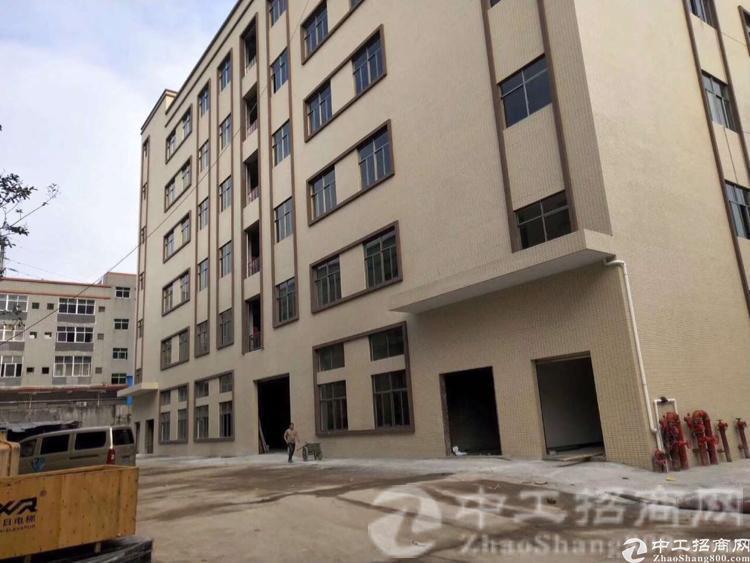 惠州桥西出独院8000平方带消防喷淋厂房招租