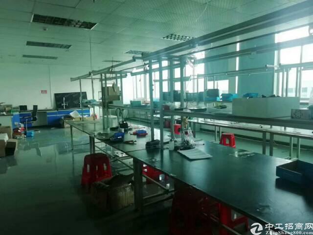 深圳带装修厂房500平米出租