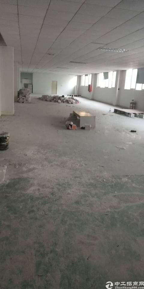 银田工业区整栋厂房整层出租标准厂房