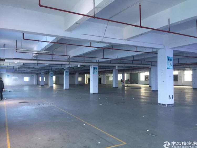公明新出单一层大面积厂房4500平方