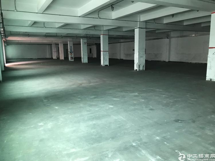 平湖新出楼上3000平标准厂房