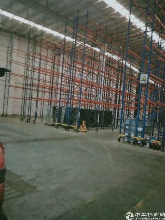 东莞塘厦新出阿里巴巴标准物流仓库10000平,滴水10米