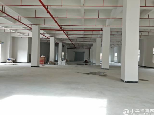 企石镇原房东独院标准厂房1-5层8780平方带喷淋消防