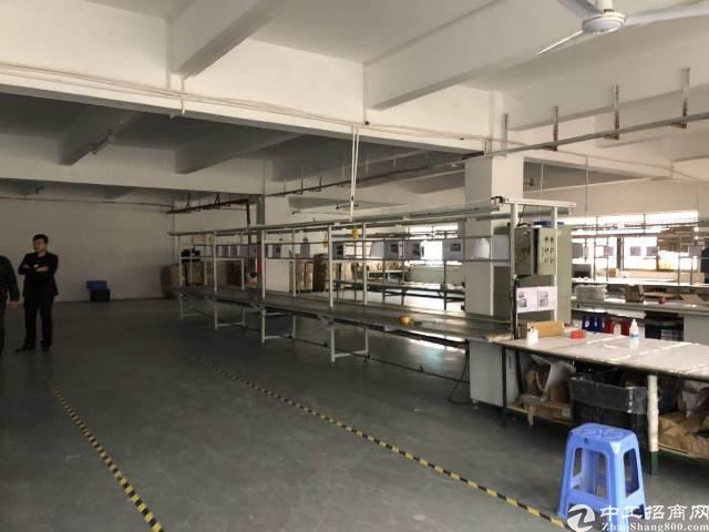坪地楼上厂房800平带装修地坪漆,面积实在15块