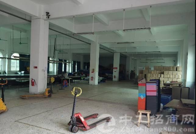 万江标准一楼厂房出租1620平,独院