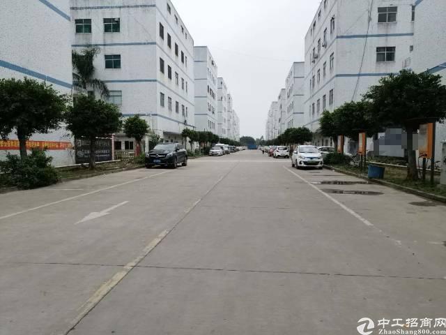 沙井靠近福永新出原房东6500平实际面积独门独院厂房