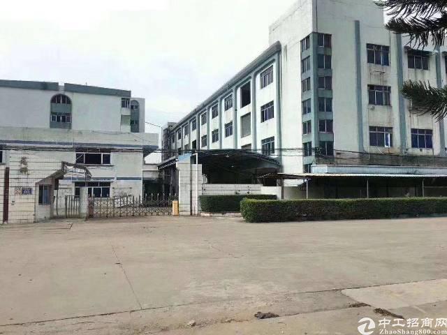 惠阳新圩红本厂房出售占地面积3800
