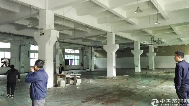 沙井新桥107国道旁边一楼厂房800平,高6米