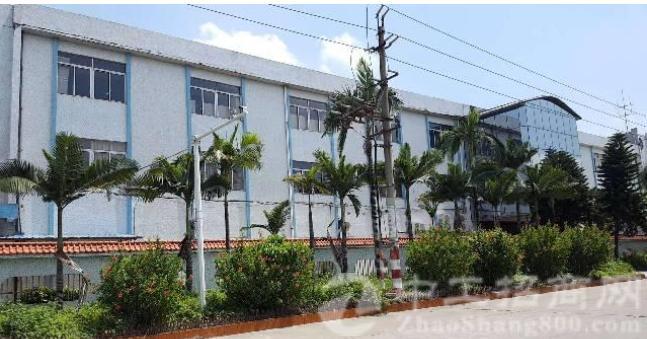 万江独院标准一楼厂房出租1620平,另宿舍办公都有。