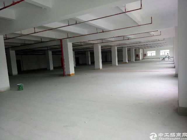 布吉吉华路长龙附近的空出厂房300平