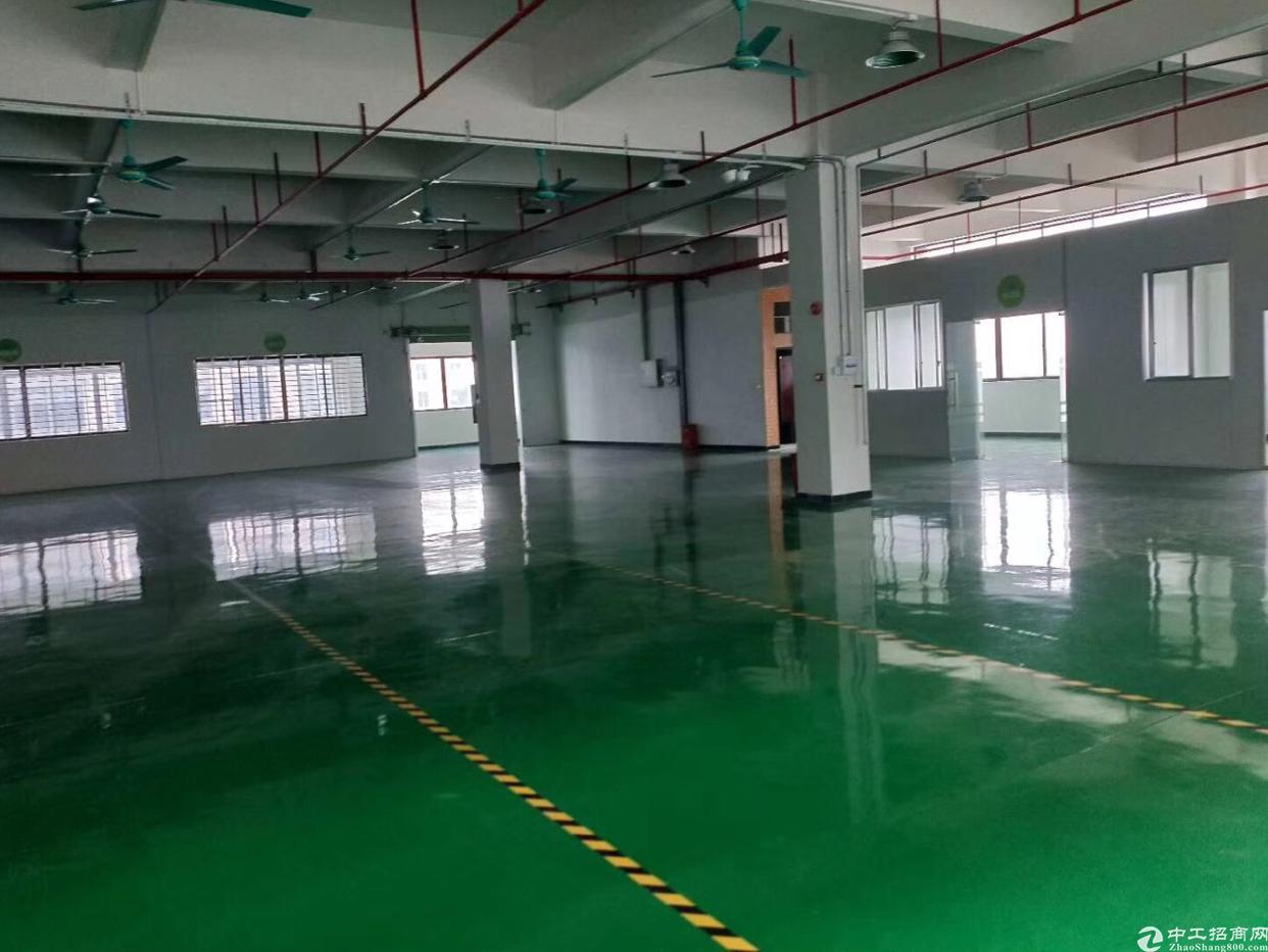 标准一楼1000高6米水电齐全