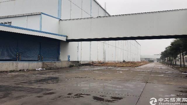临深惠州惠阳新出原房东独栋15米高立体仓库