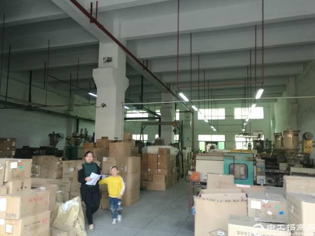 沙井一楼700平6米高厂房出租