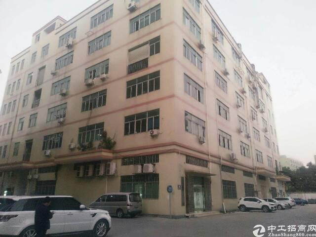 沙井高速路口新出楼上1250平做贴片厂房、无需转让费!