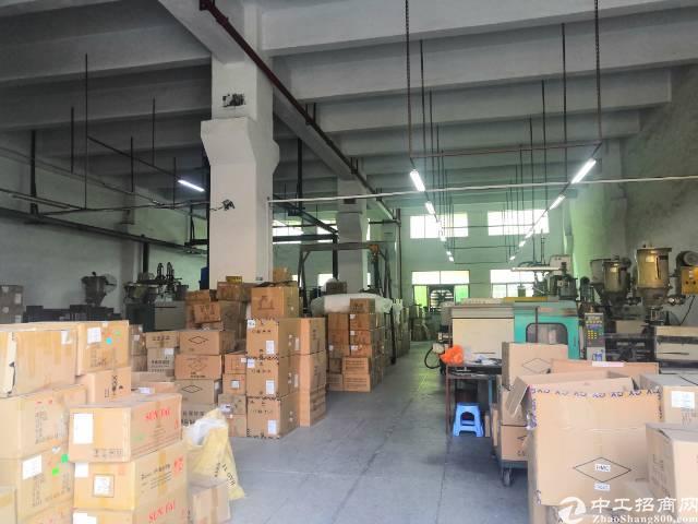 沙井黄埔107国道边新出一楼700平带牛角厂房