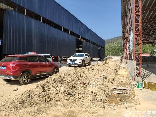 惠东白花高速出口1公里内全新独院钢构厂房招租