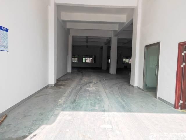 观澜观光路边新出一楼930平标准厂房,带三间办公室