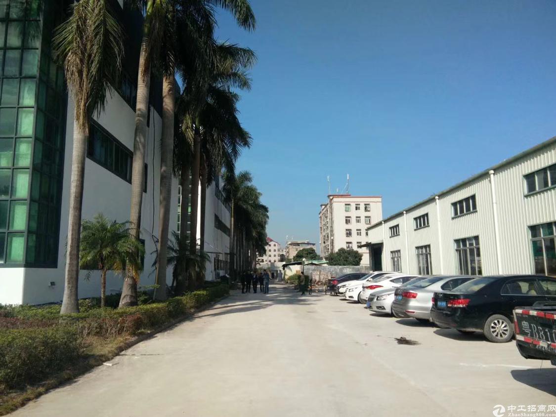 公明将石花园式20000平方厂房出租