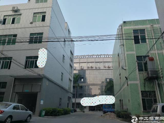 惠州仲恺红本双证大气优质工业园出售