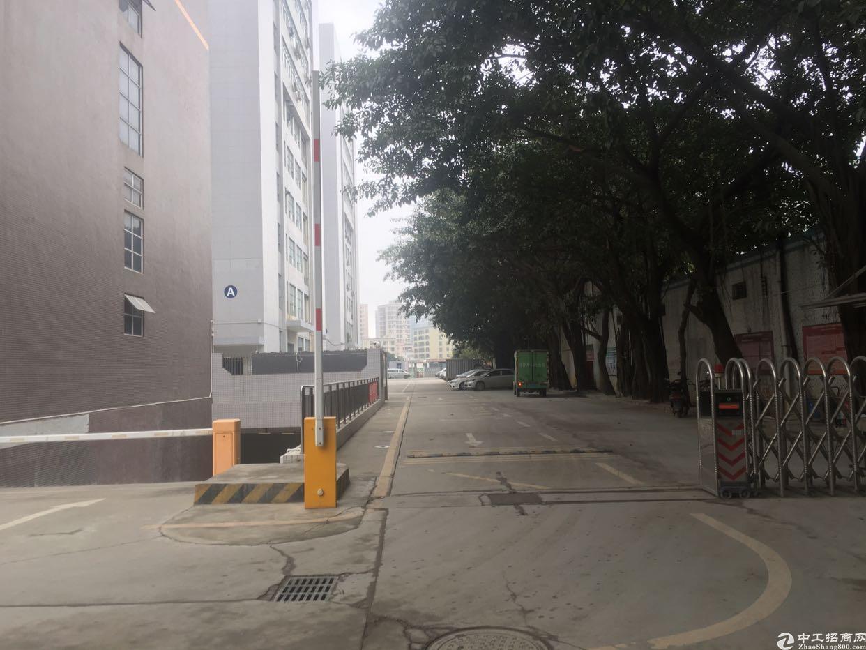福永地铁口楼上2500平米带装修厂房出租