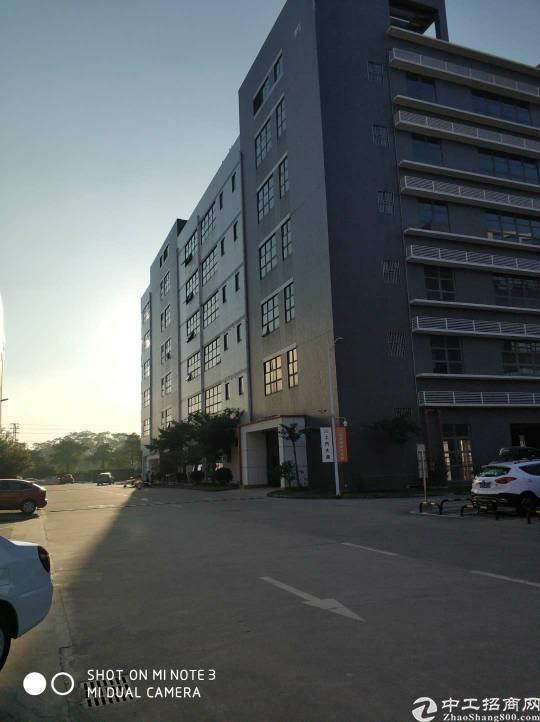 龙岗独栋厂房出租原4s店形象非常好交通便利