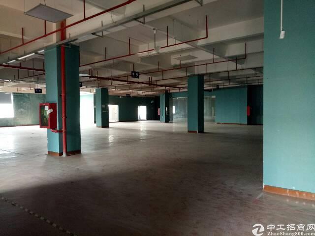 宝安沙井高新园区带装修厂房1600平方