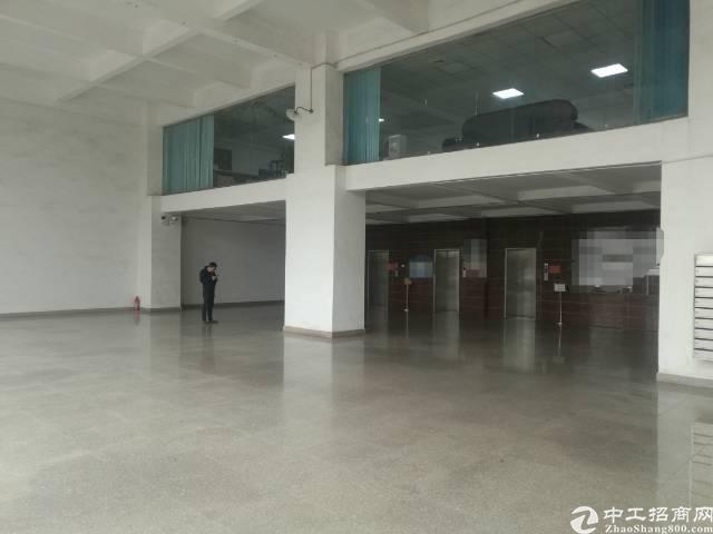 沙井新桥广深高速出口附近楼上精装修1600平厂房出租