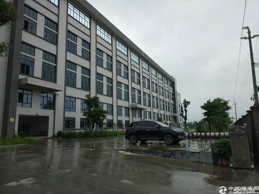 黄浦区永和开发区高大上独门独院厂房23000平方
