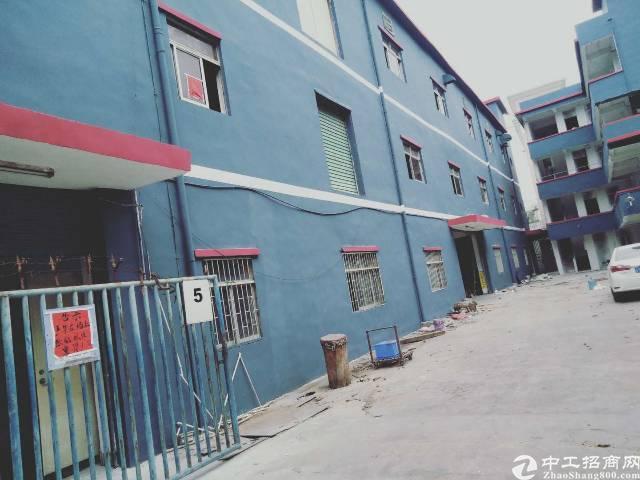 坂田新出独院5000坪, 1标准厂房1--3层