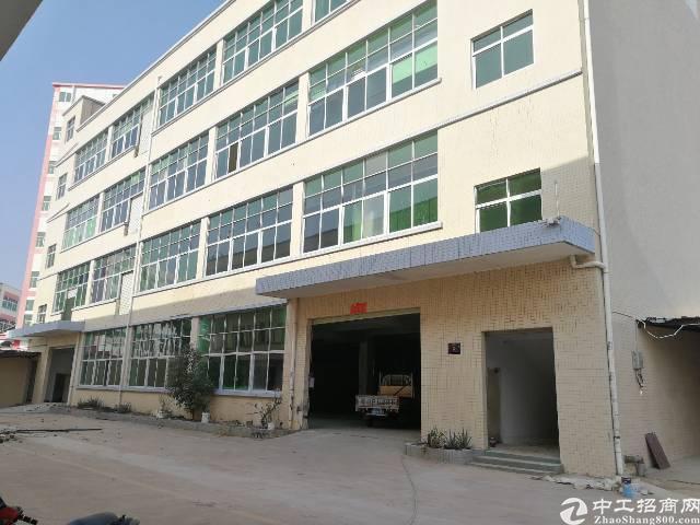 公明楼村厂房500-3000平方大小面积可分租