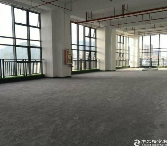 宝安中心区全新装修100平起精装写字楼出租