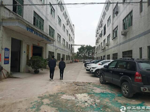 龙华沈海高速出口原房东1楼500平厂房出租