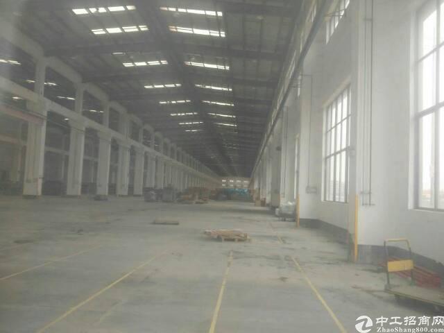 松岗12米高钢构厂房出租2500平米