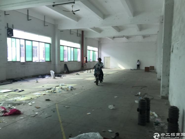 清湖地铁口大工业园标准一楼厂房560平