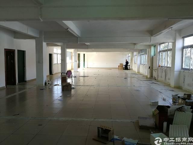 凤岗镇竹塘新出带办公室标准厂房3楼500平