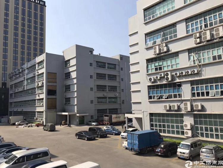 龙华大浪商业中心附近新出带装修厂房260平出租