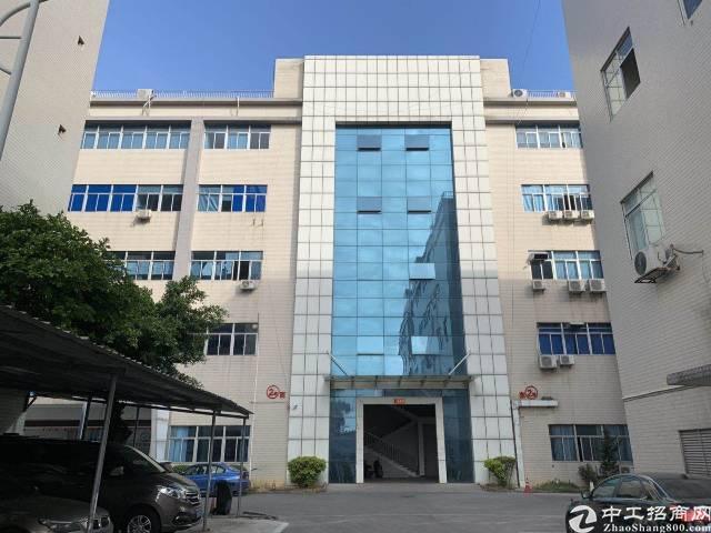 广州黄埔区云埔工业区新出一楼厂房1300平,带装修