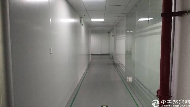 沙井新桥楼上精装修厂房出租800平,水电到位,带无尘车间