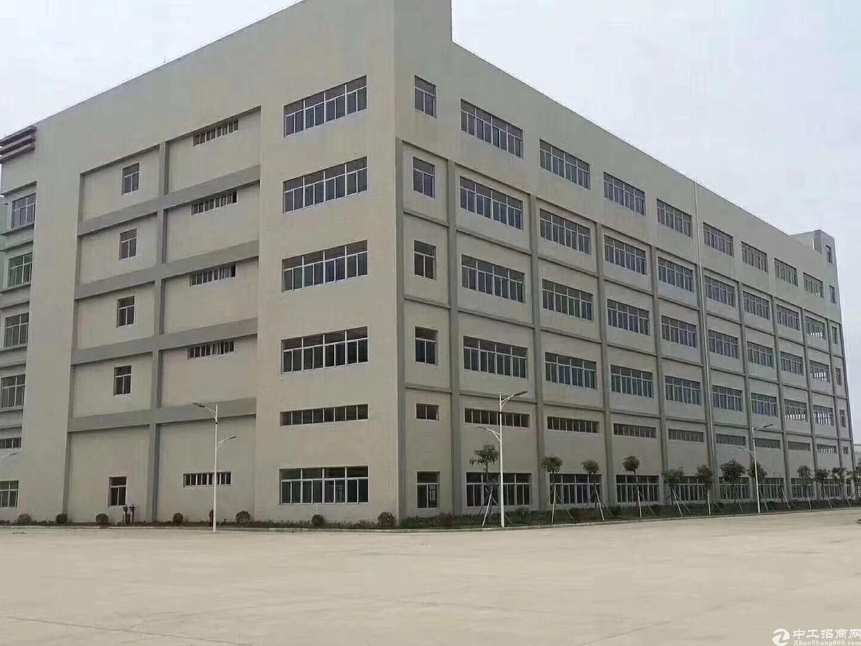 大岭山国有证厂房28300平方米出售