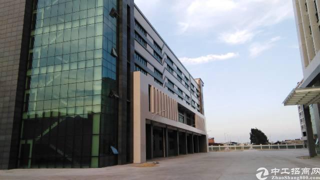 东莞市常平镇9000平米高标准工业厂房出售