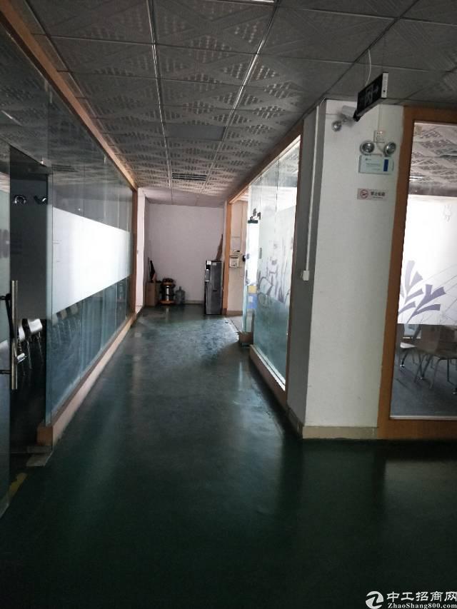 松岗塘下涌广田路边新出4楼整层2800平方米带装修办公室