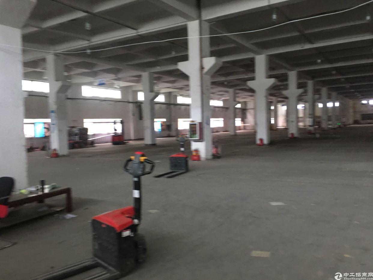 沙井新桥独门独院厂房2700平出租